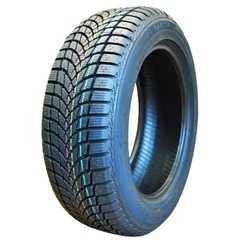 Купить Зимняя шина SAETTA Winter 205/55R16 91H