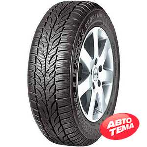 Купить Зимняя шина Paxaro Winter 225/45R17 91H
