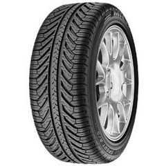 Купить Всесезонная шина MICHELIN Pilot Sport A/S 275/35R18 95Y
